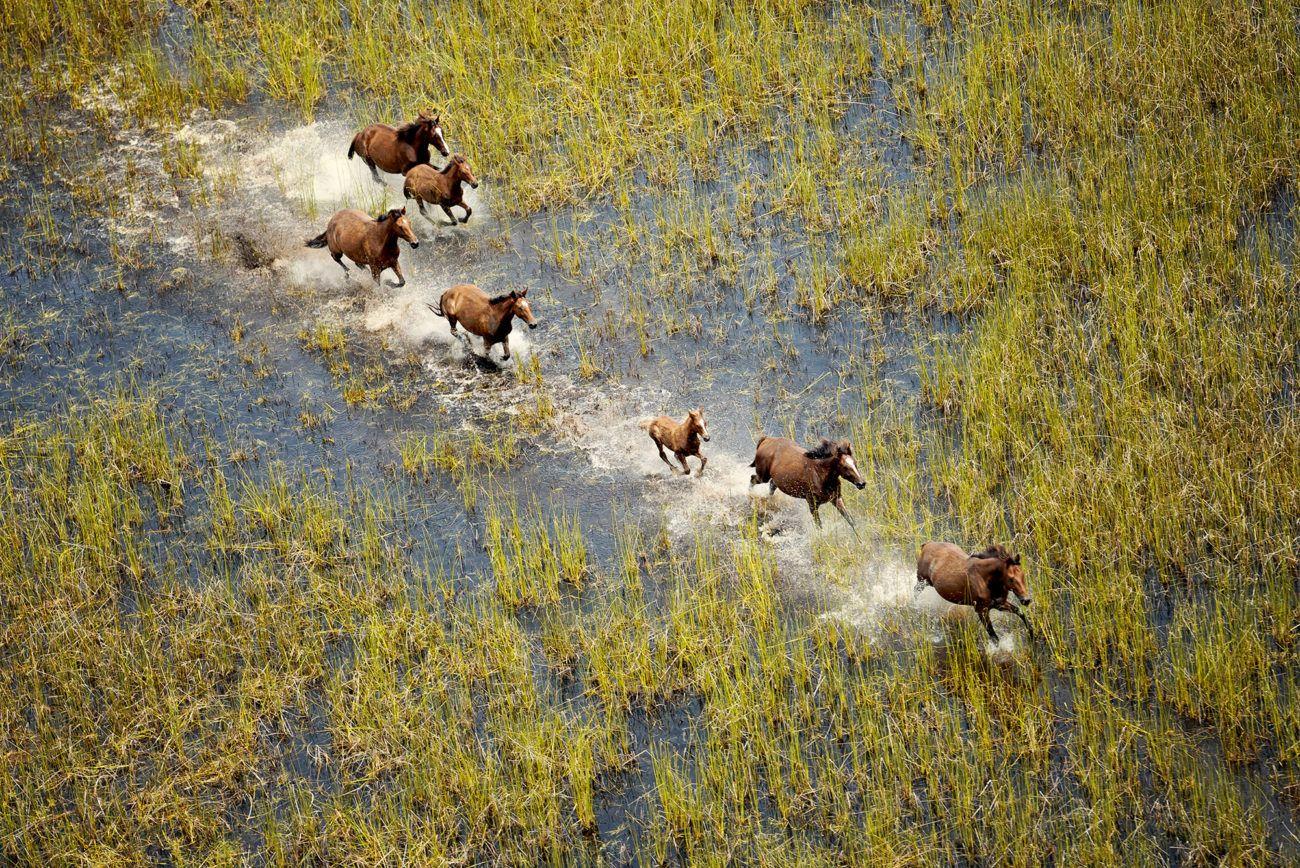 Lauren Bath - Wild Horses Travel Photography. Broome, The Kimberley Western Australia