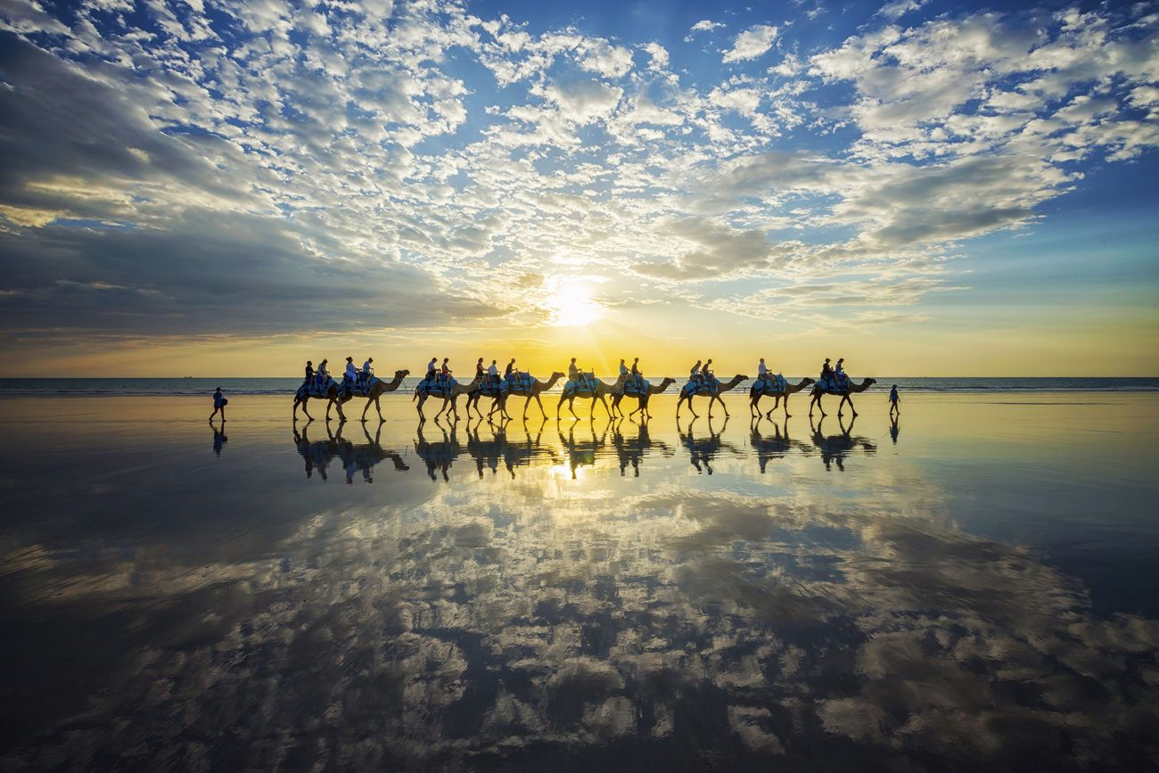 Lauren Bath - Camels Reflected Camel Train Wildlife Photography. Broome, The Kimberley, Western Australia. Cable Beach